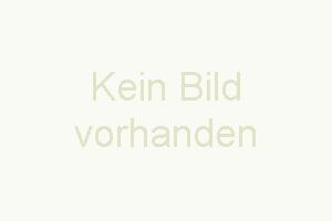 """Auf der gemütlichen Terrasse, ausgestattet mit Tisch, Stühlen, Sonnenschirm und Gasgrill lässt sich der Urlaub bestens genießen. - Bild 9: Fewo """"Sucht den See"""""""